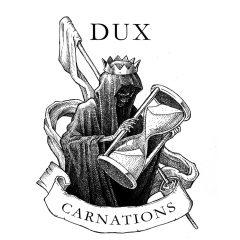 Dux – Carnations