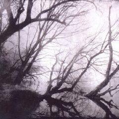 Astrofaes – Knowing No Dawn