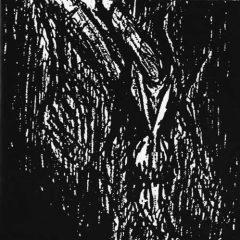 Vlad Tepes – Morte Lune